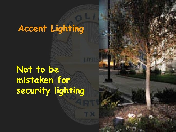 Accent Lighting Not to be mistaken for security lighting