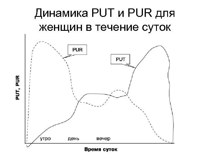 Динамика PUT и PUR для женщин в течение суток