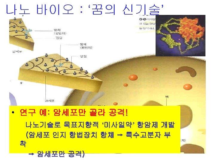 나노 바이오 : '꿈의 신기술' • 연구 예: 암세포만 골라 공격! 나노기술로 목표지향적 '미사일약'