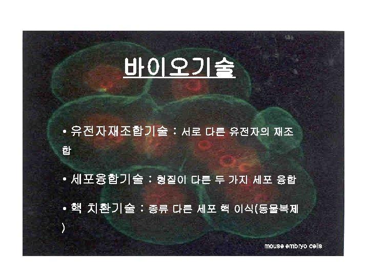 바이오기술 • 유전자재조합기술 : 서로 다른 유전자의 재조 합 • 세포융합기술 : 형질이 다른