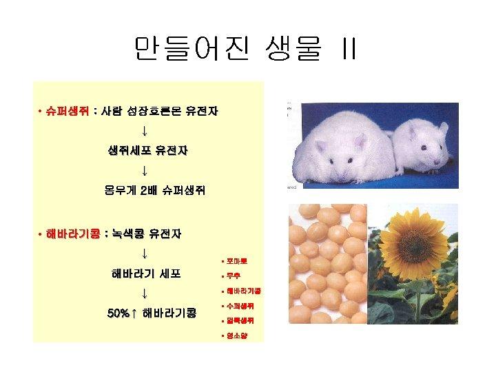 만들어진 생물 Ⅱ • 슈퍼생쥐 : 사람 성장호른몬 유전자 ↓ 생쥐세포 유전자 ↓ 몸무게