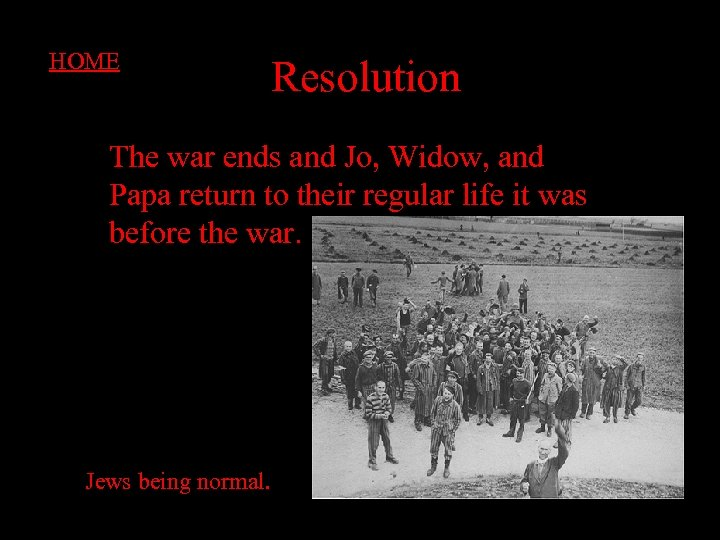 HOME Resolution The war ends and Jo, Widow, and Papa return to their regular
