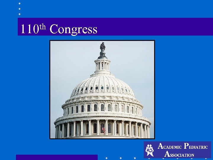 th 110 Congress