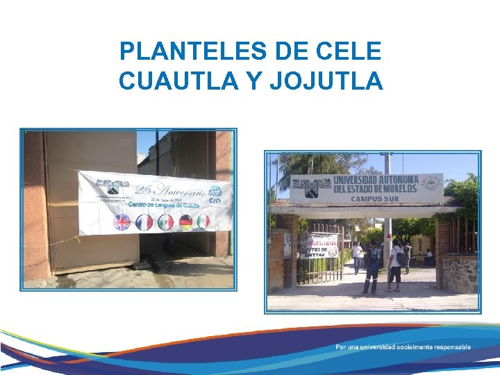 PLANTELES DE CELE CUAUTLA Y JOJUTLA