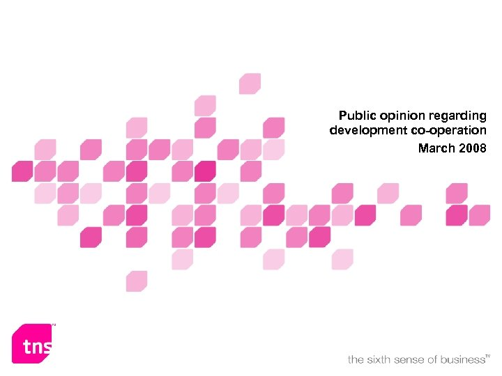Public opinion regarding development co-operation March 2008