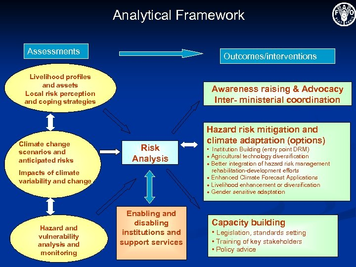 Analytical Framework Assessments Outcomes/interventions Livelihood profiles and assets Local risk perception and coping strategies