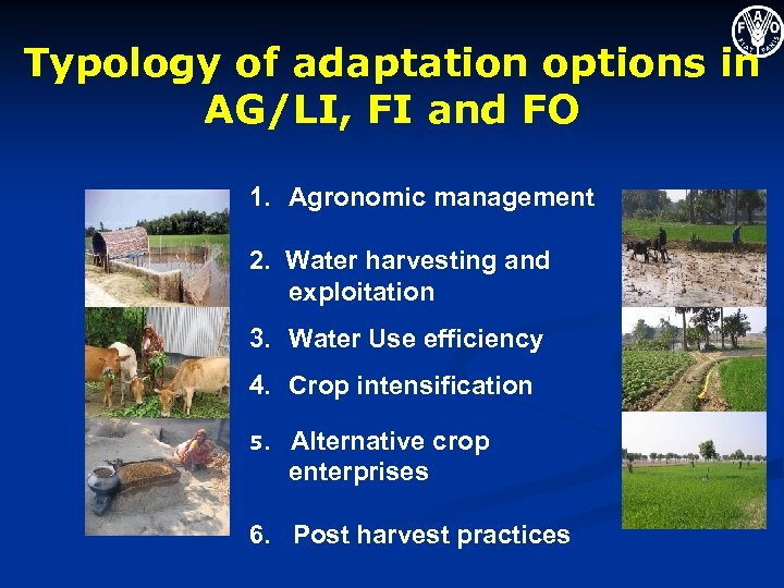 Typology of adaptation options in AG/LI, FI and FO 1. Agronomic management 2. Water