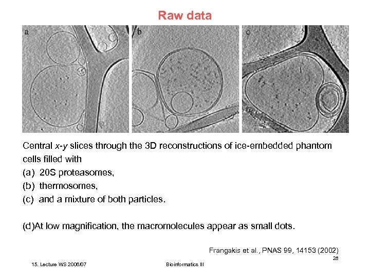 Raw data Central x-y slices through the 3 D reconstructions of ice-embedded phantom cells