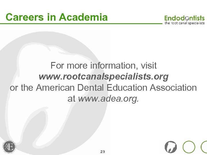 Careers in Academia For more information, visit www. rootcanalspecialists. org or the American Dental