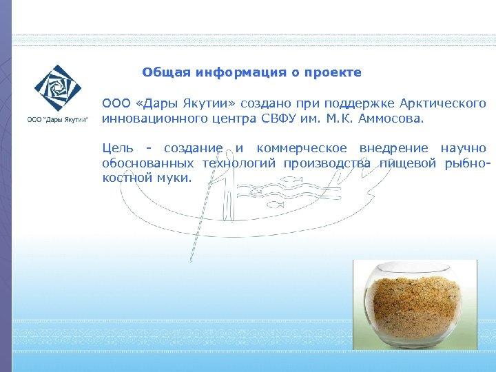 Общая информация о проекте ООО «Дары Якутии» создано при поддержке Арктического инновационного центра СВФУ