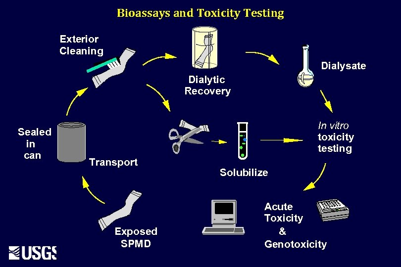 Bioassays and Toxicity Testing Exterior Cleaning Dialysate Dialytic Recovery Sealed in can In vitro