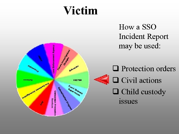 Victim How a SSO Incident Report may be used: q Protection orders q Civil