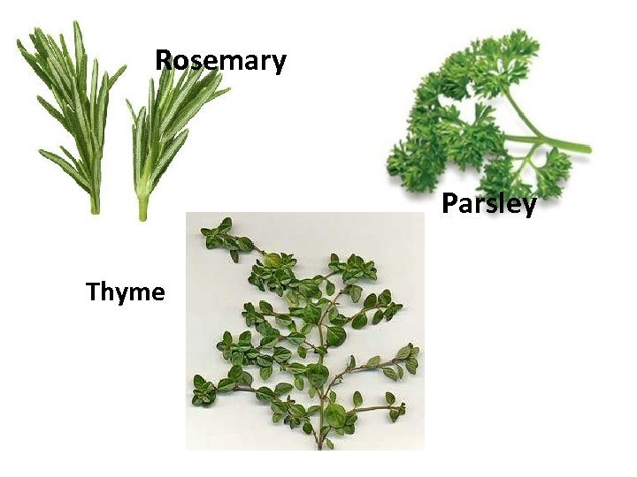 Rosemary Parsley Thyme