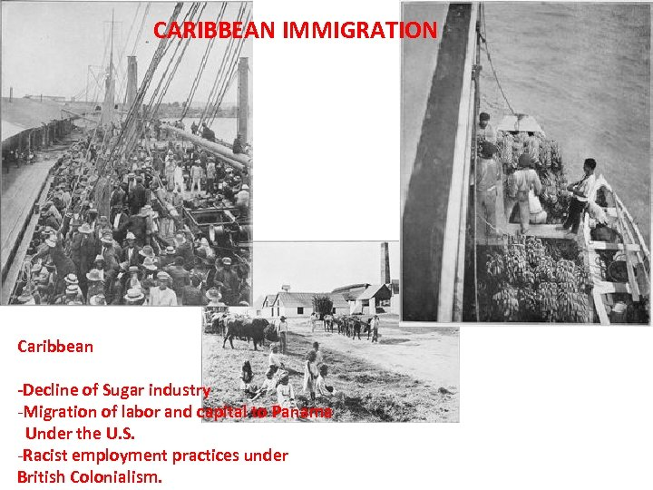 CARIBBEAN IMMIGRATION Caribbean -Decline of Sugar industry -Migration of labor and capital to Panama