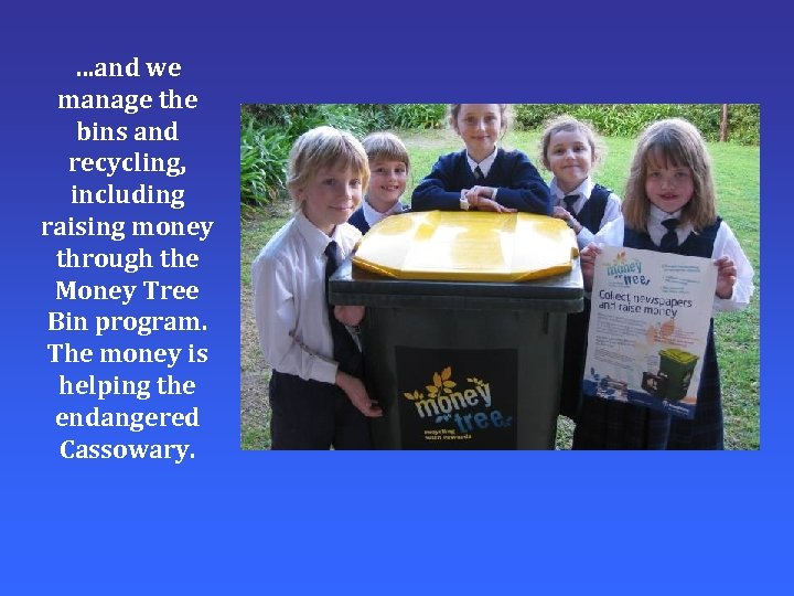 …and we manage the bins and recycling, including raising money through the Money Tree