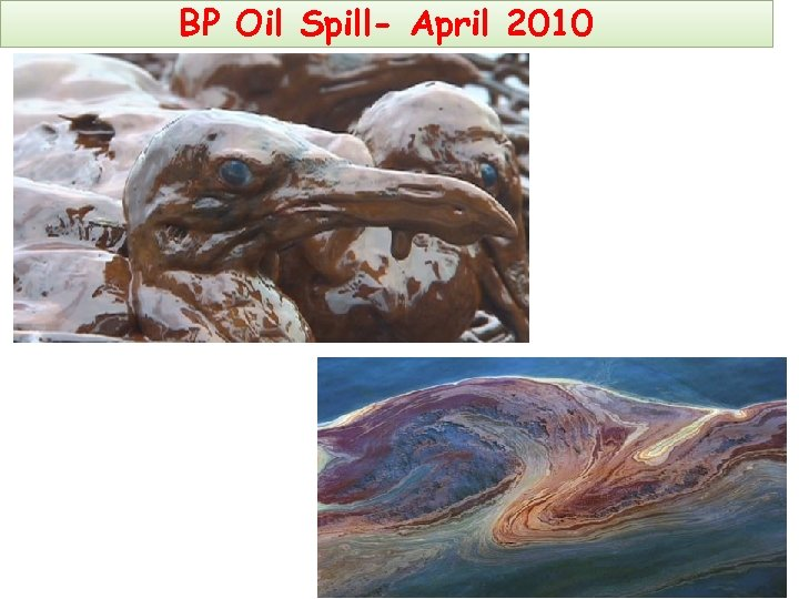 BP Oil Spill- April 2010