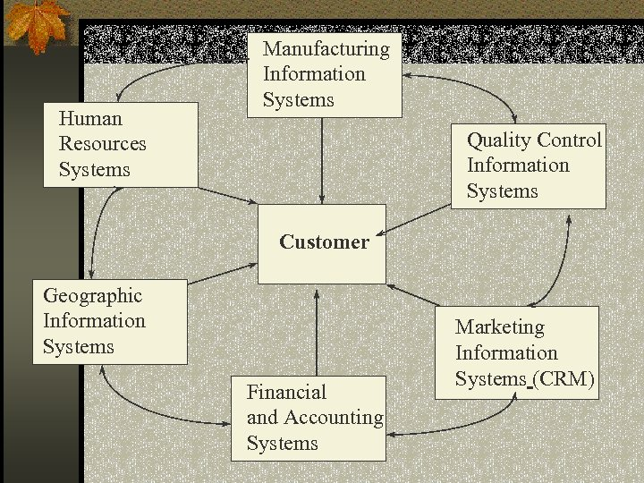 Human Resources Systems Manufacturing Information Systems Quality Control Information Systems Customer Geographic Information Systems