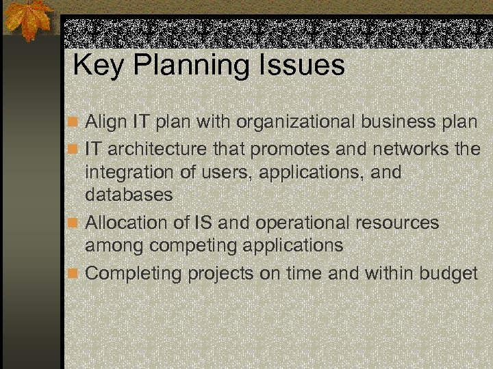 Key Planning Issues n Align IT plan with organizational business plan n IT architecture
