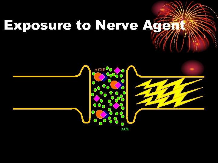 Exposure to Nerve Agent ACh. E ACh