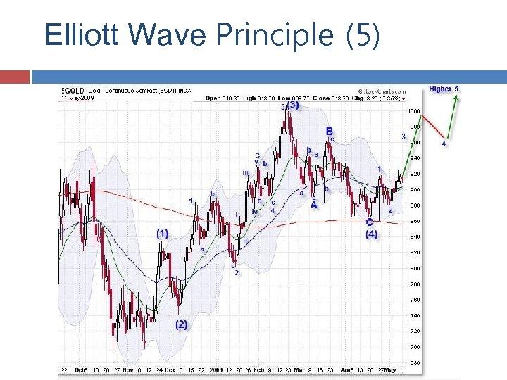 Elliott Wave Principle (5)