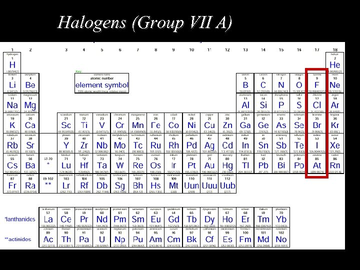 Halogens (Group VII A)