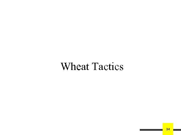 Wheat Tactics 14