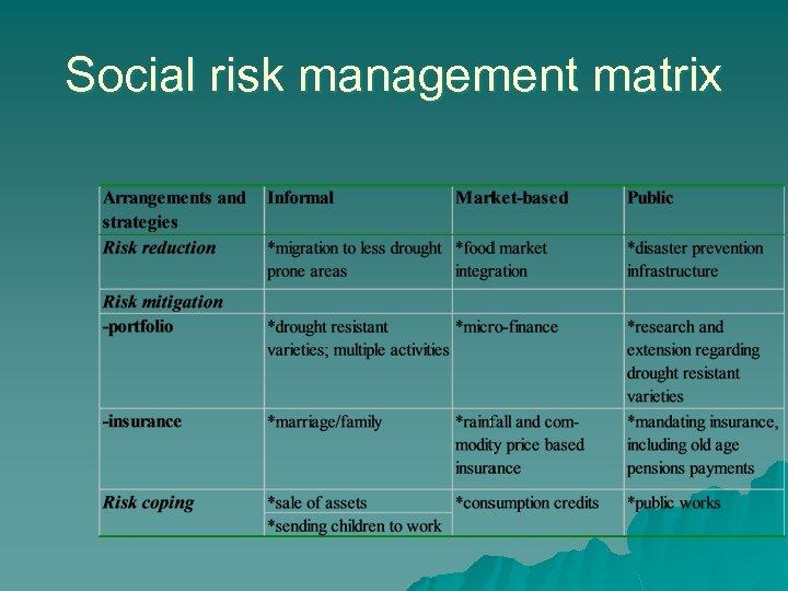 Social risk management matrix