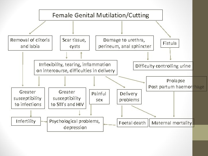 Female Genital Mutilation/Cutting Removal of clitoris and labia Scar tissue, cysts Damage to urethra,