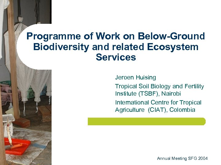 Programme of Work on Below-Ground Biodiversity and related Ecosystem Services Jeroen Huising Tropical Soil