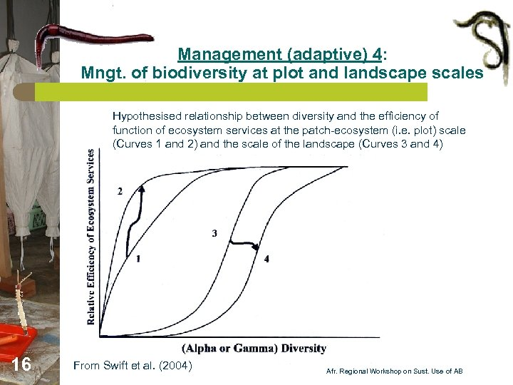 Management (adaptive) 4: Mngt. of biodiversity at plot and landscape scales Hypothesised relationship between