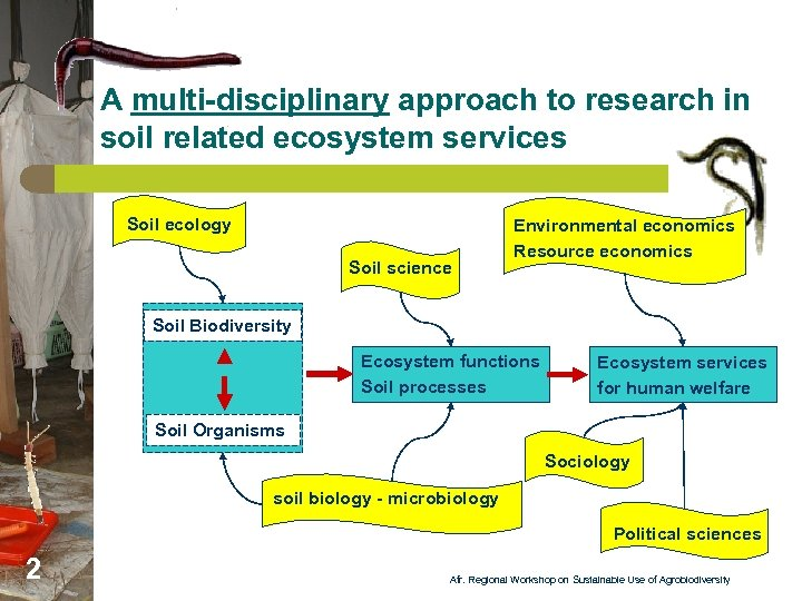 A multi-disciplinary approach to research in soil related ecosystem services Soil ecology Soil science