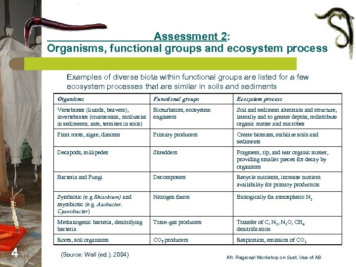 Assessment 2: Organisms, functional groups and ecosystem process Examples of diverse biota within functional