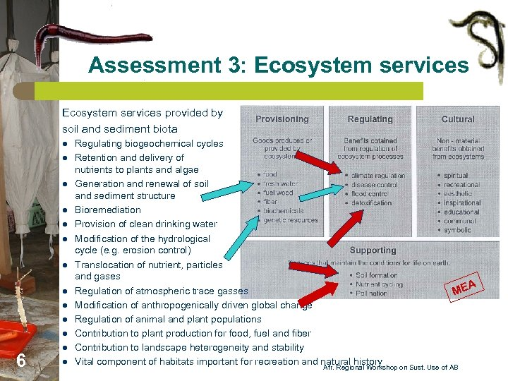 Assessment 3: Ecosystem services provided by soil and sediment biota l l l 6