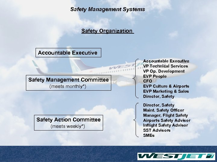 Safety Management Systems Safety Organization Accountable Executive Safety Management Committee (meets monthly*) Safety Action