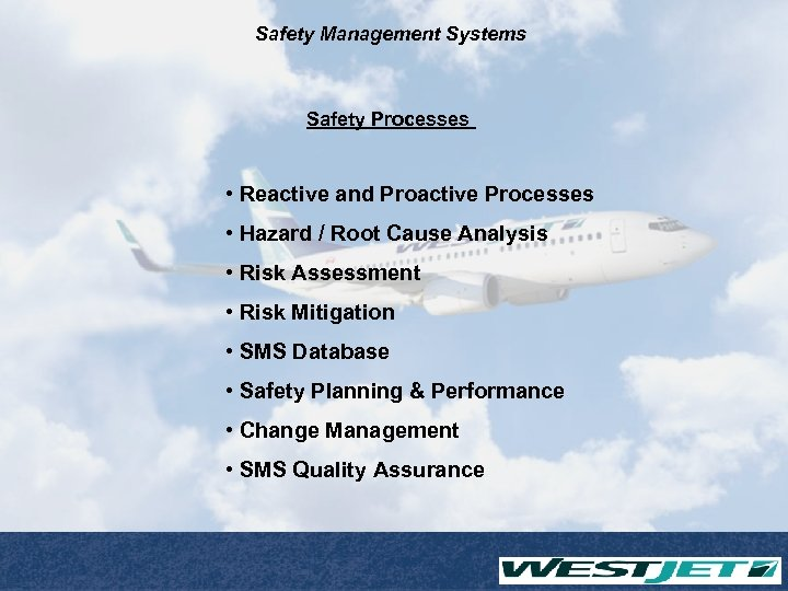 Safety Management Systems Safety Processes • Reactive and Proactive Processes • Hazard / Root