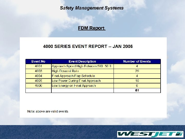 Safety Management Systems FDM Report