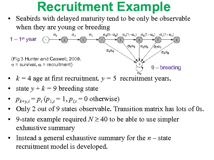 Recruitment Example • Seabirds with delayed maturity tend to be only be observable when