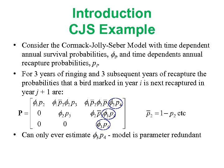 Introduction CJS Example • Consider the Cormack-Jolly-Seber Model with time dependent annual survival probabilities,