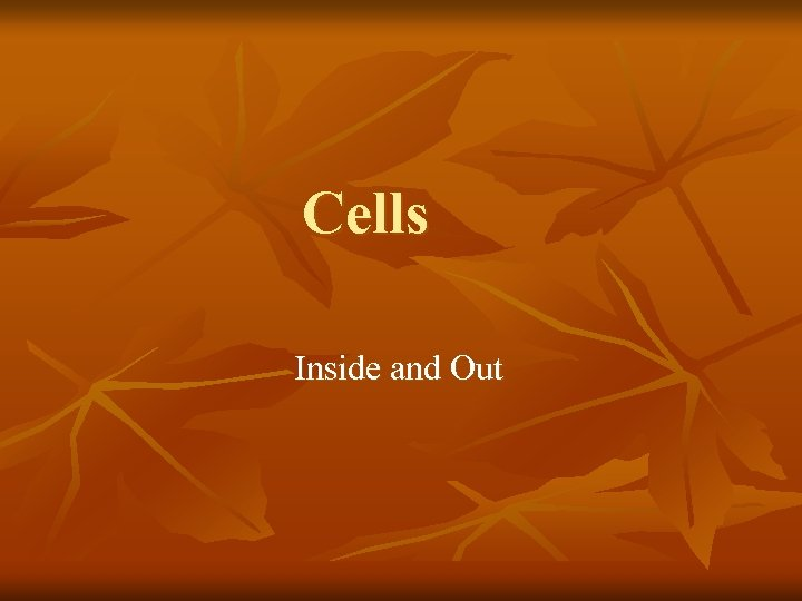 Cells Inside and Out