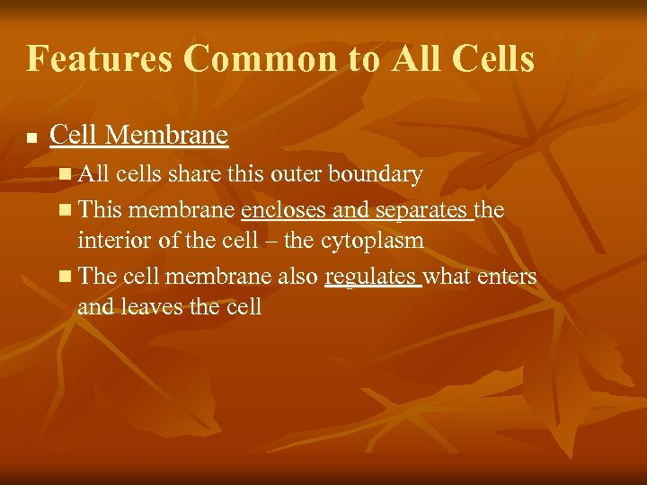 Features Common to All Cells n Cell Membrane n All cells share this outer
