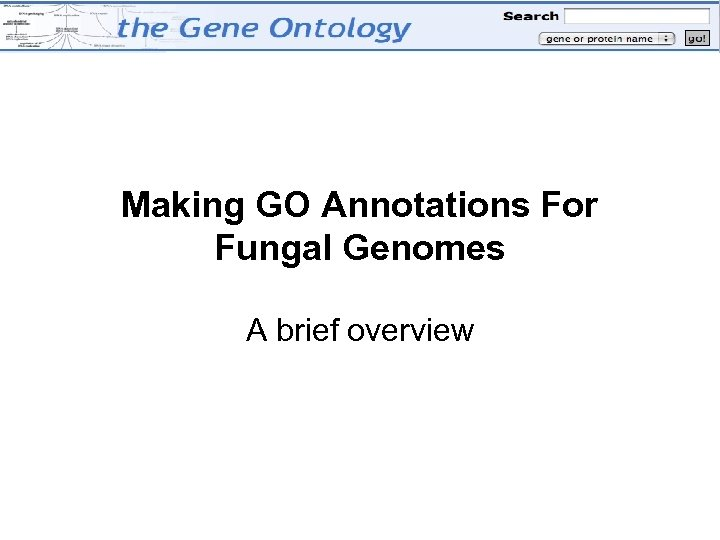 Making GO Annotations For Fungal Genomes A brief overview