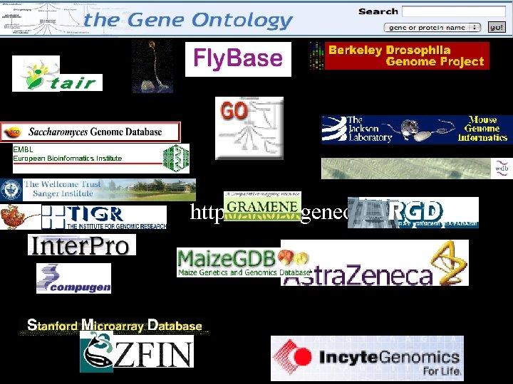 http: //www. geneontology. org/