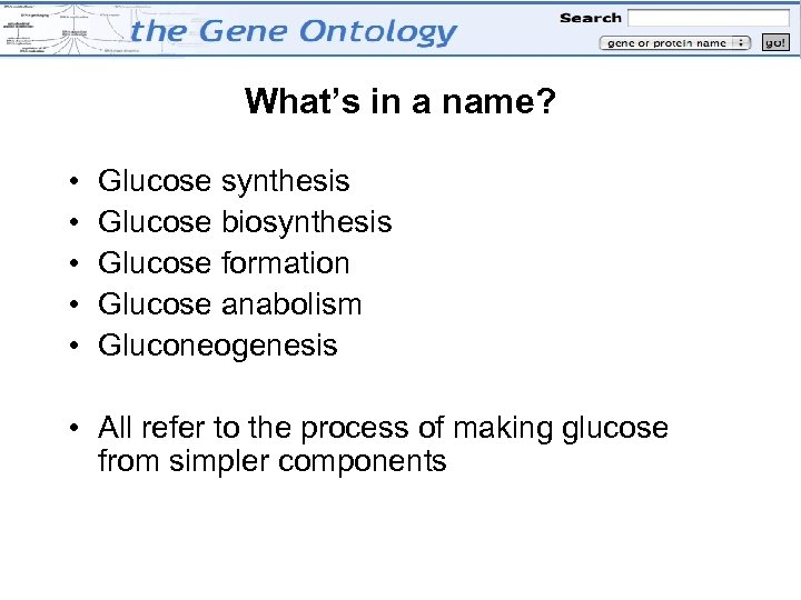 What's in a name? • • • Glucose synthesis Glucose biosynthesis Glucose formation Glucose