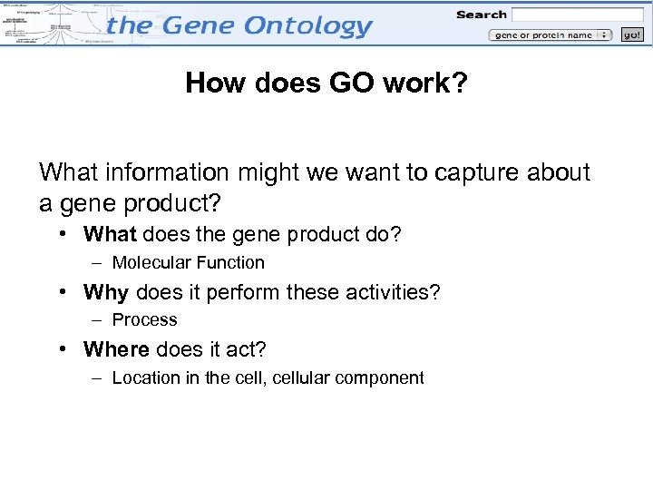 How does GO work? What information might we want to capture about a gene