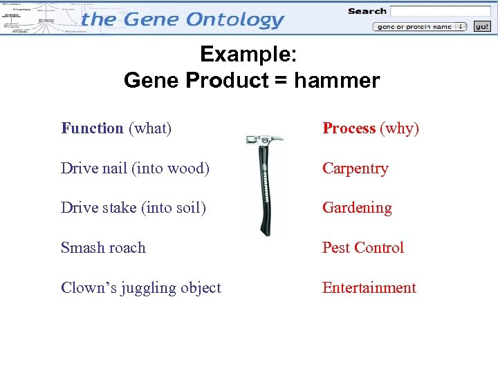 Example: Gene Product = hammer Function (what) Process (why) Drive nail (into wood) Carpentry