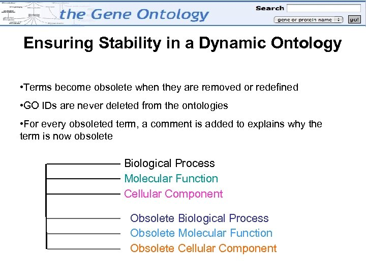 Ensuring Stability in a Dynamic Ontology • Terms become obsolete when they are removed
