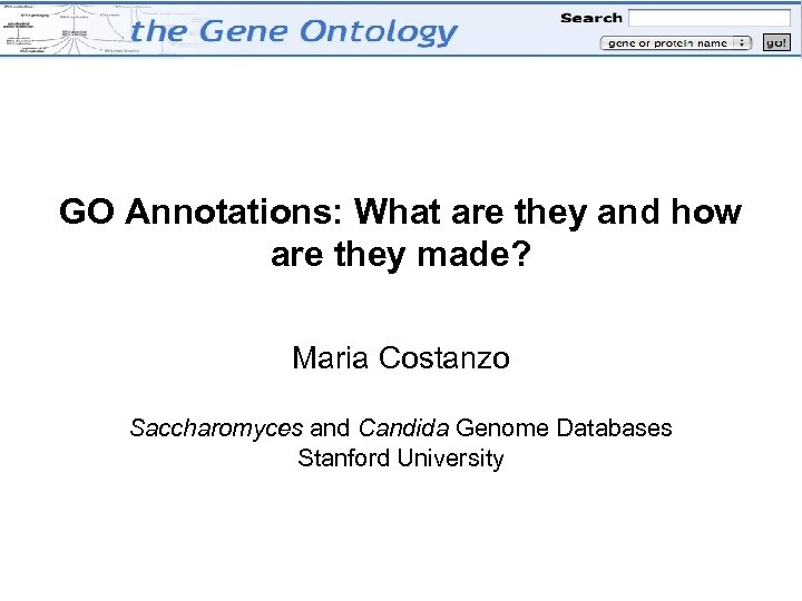 GO Annotations: What are they and how are they made? Maria Costanzo Saccharomyces and