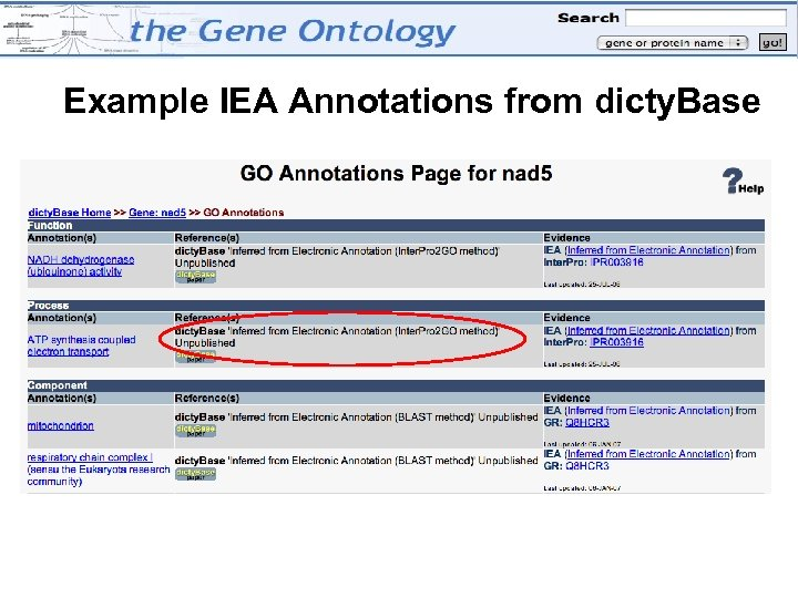 Example IEA Annotations from dicty. Base