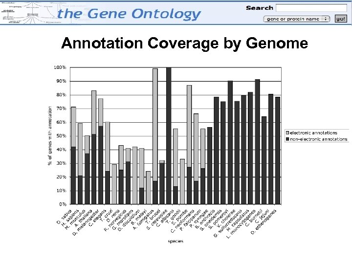 Annotation Coverage by Genome Annotation coverage