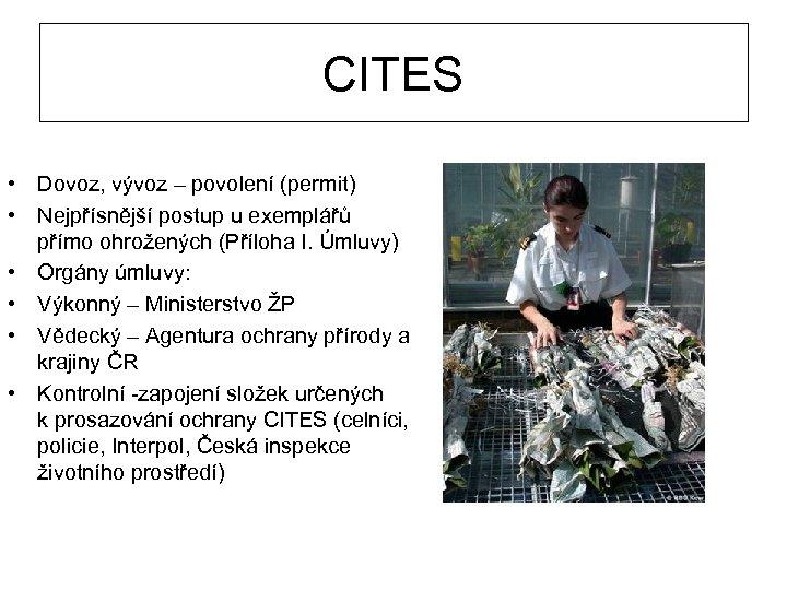 CITES • Dovoz, vývoz – povolení (permit) • Nejpřísnější postup u exemplářů přímo ohrožených